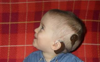 Zvukový procesor pro neslyšícího Dominika