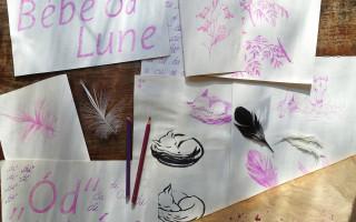 Ukolébavky ze světa – vydání alba Bébé Lune