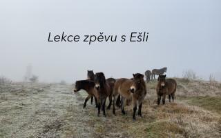 """Podpořte první videoklip, """"pražské Američanky ze Slovenska"""", zpěvačky Ešli!"""