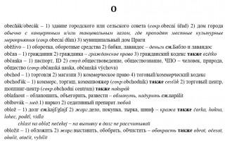 Špatnej česko-ruský slovník // Плохой чешско-русский словарь