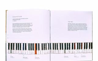 Dostaňme prvotinu Veroniky Bílkové Ludwig van Beethoven na pulty knihkupectví
