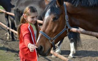 Hipoterapie pro 13 letou Elišku se vzácným syndromem