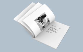 Vydejme knižně sbírku dadaistických textů premiéra Babiše
