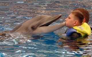 Delfinoterapie pro Kubu s Nijmegen breakege syndromem