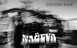 Podpořme společně Moniku Načevu a její album Zdivočelí koně #kulturažije