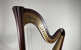Koncertní harfa pro Miriam