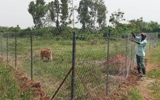 Tréninková ekofarma pro Keňu