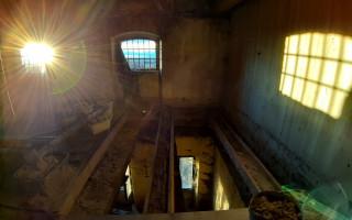 Oprava hlavní budovy ve zvířecím azylu Toulavé tlapky