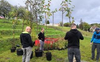Sázíme stromy: Pomozte nám sázet i keře