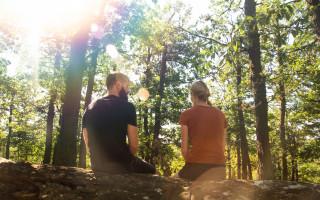 Podpořme nadčasový koncept Terapie mezi stromy