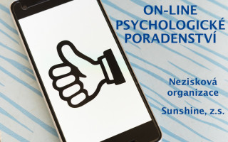 Psychologické poradenství on-line v rámci pandemie Covid-19