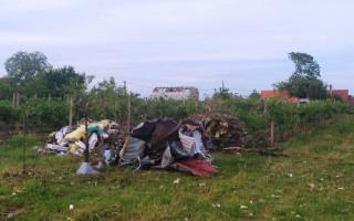 Obnova sadu v Mikulčicích, který zničilo tornádo