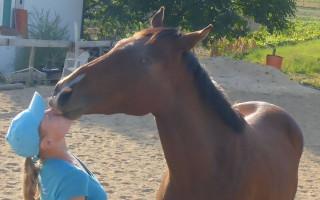 Za snahu vrátit Ivu zpět do sedla trénink s Lukášem Krpálkem - Iva spadla z koně nesčetněkrát. Ale poslední pád byl fatální.
