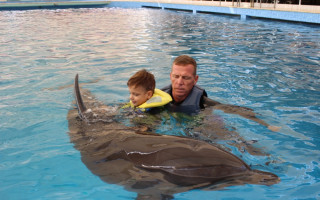 Aby Vojtíšek mohl za delfíny