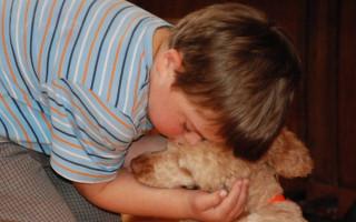 Pomáháme psím srdcem