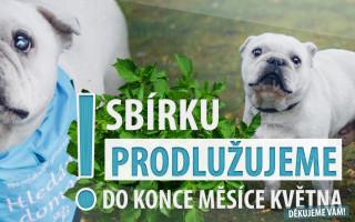 Pomozme spolku PES nejvěrnější přítel vybudovat Azyl pro zachráněné psy