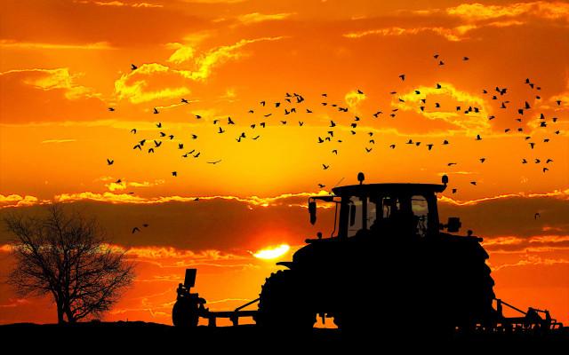 Zážitek na 1 den - staňte se farmářem!