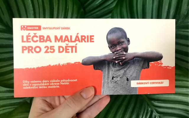 Léčba malárie pro 25 dětí