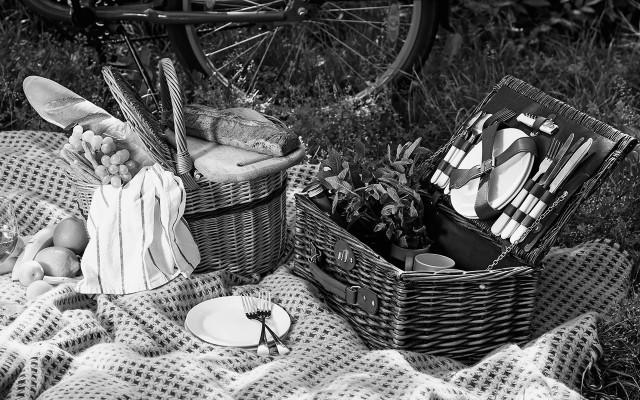 Společný piknik