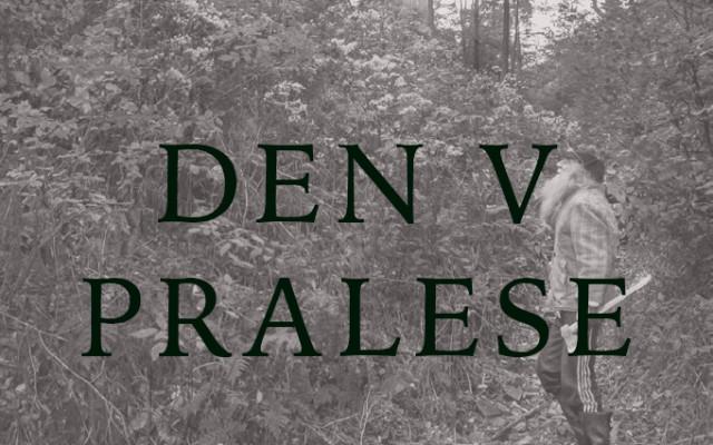 Den v pralese