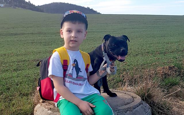 Asistenční fenka Bella pro autistického Sebastiena