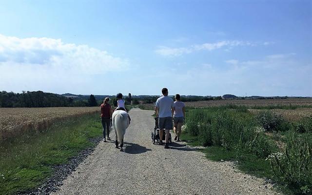 Procházka na poníkovi