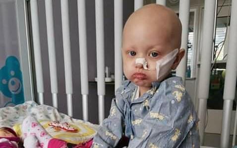 Pomohli jste Elizabethce, který trpí myeloidní leukémií
