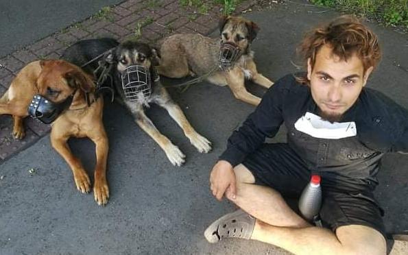 Pomoc pro těžce nemocného psa, Karla