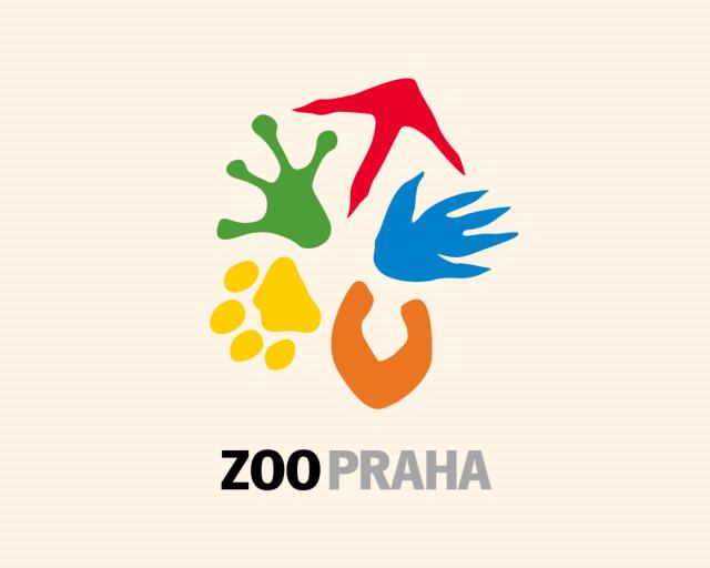 Podpořte dvojčata mary slaništní, která se narodila v Zoo Praha v době karantény