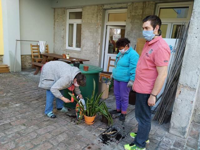 Podpořme Chráněné bydlení Ovečka