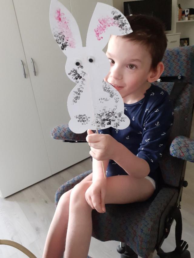 Přispěli jste na dětský invalidní kočárek pro Denise
