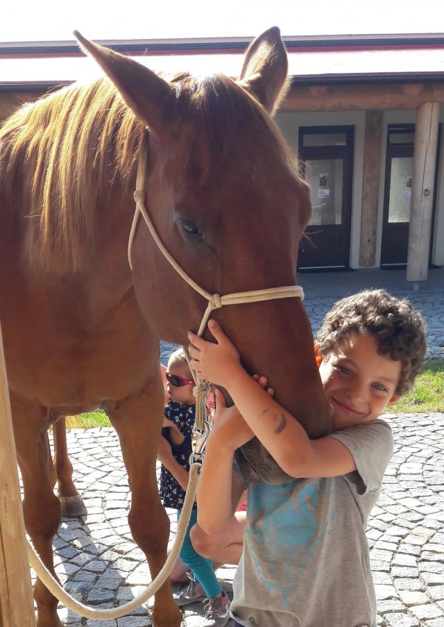Léčebné hiporehabilitační pobyty pro Alíka