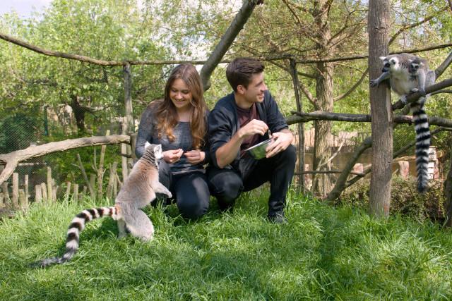 Pomohli jste naplnit misky zvířátkům v Zooparku Zájezd
