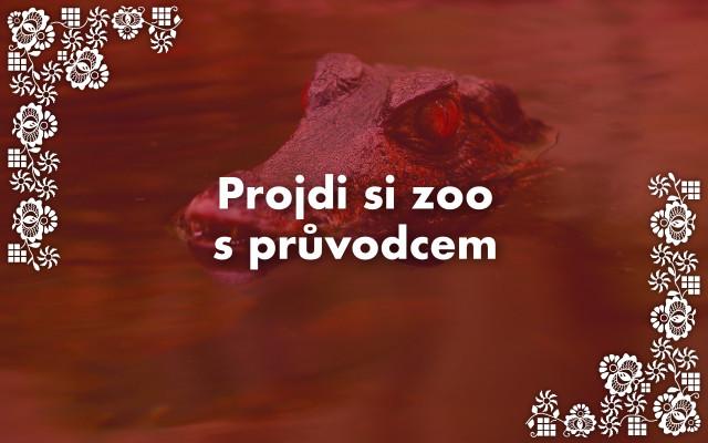 Projdi si zoo s průvodcem