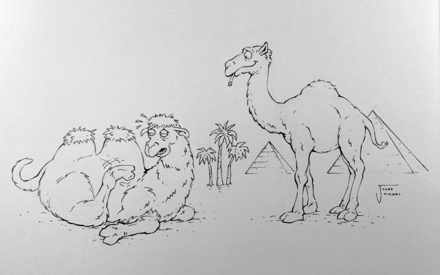 Kniha Verše potrhlé s podpisem autorů a originálem obrázku velblouda