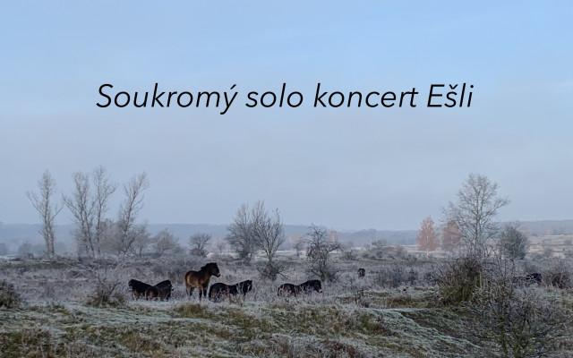 Soukromý solo koncert Ešli, 40 min