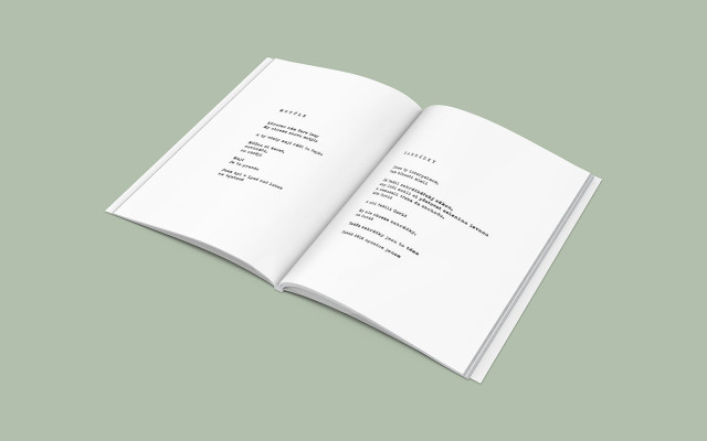 Pět vytisků knihy ANDYKÓDY (poštou)