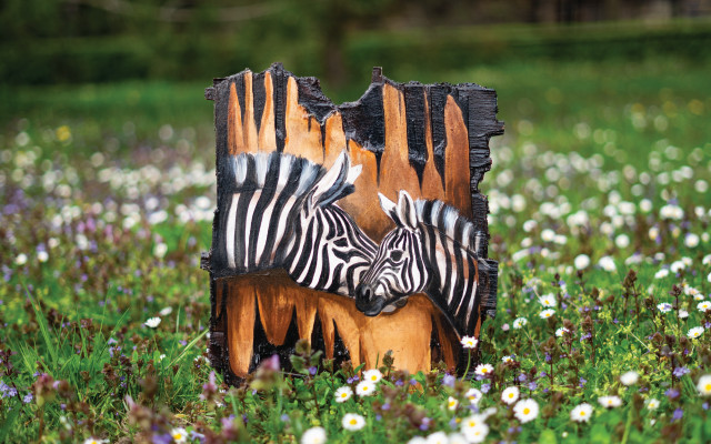 Kousek zoo v obýváku - zebry
