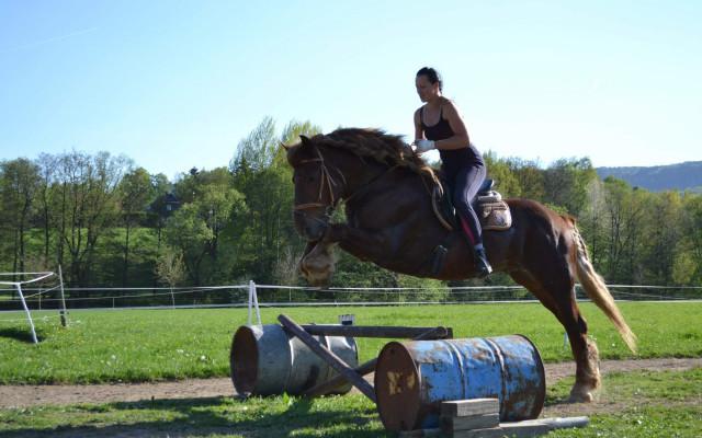 Voucher na jezdecké lekce