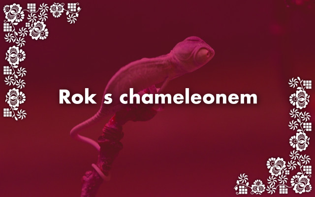 Rok s chameleonem