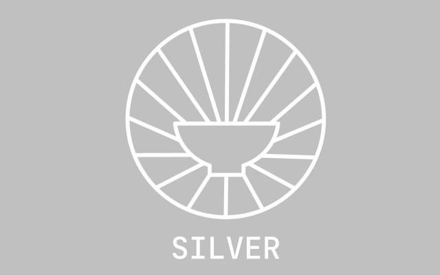 Mecenáš - SILVER